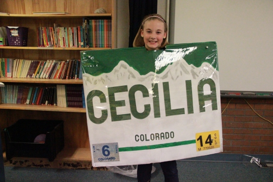 Colorado License Plate Costume